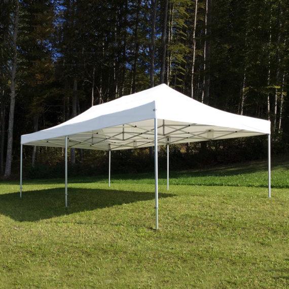 Master Pavillon 4x4m