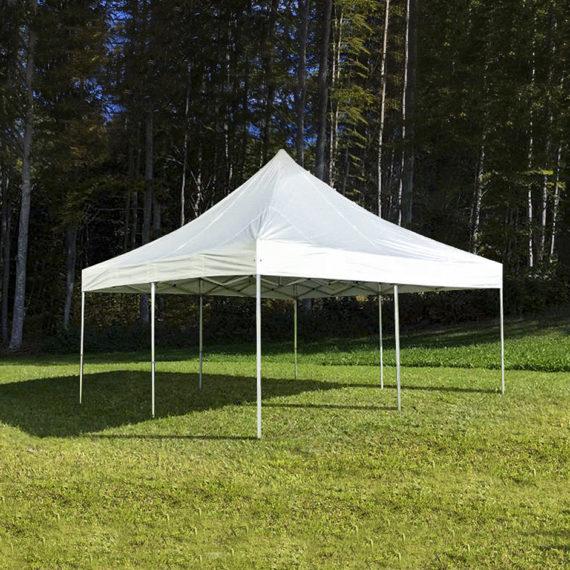 Master Pavillon 5x5m